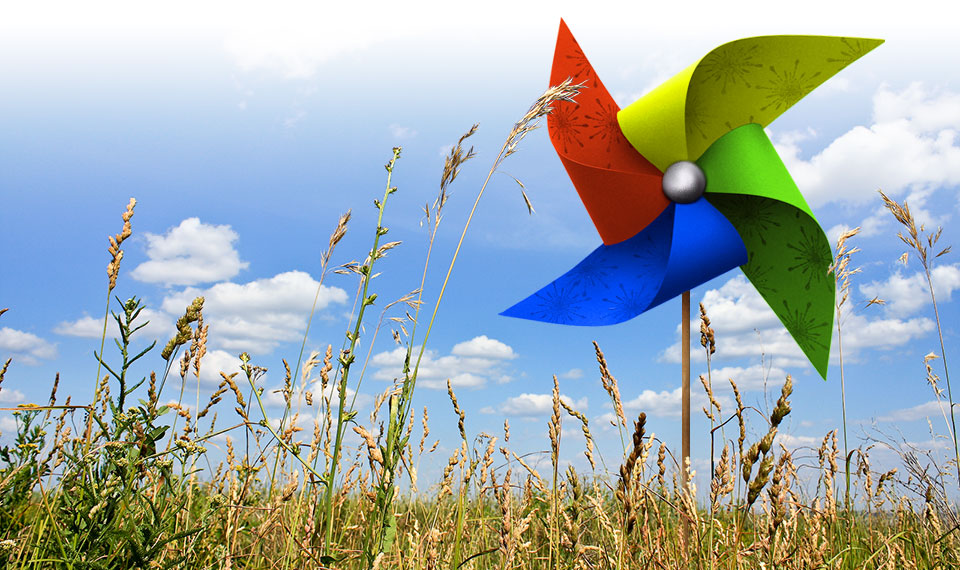 Colourful pinwheel in a field of wheat